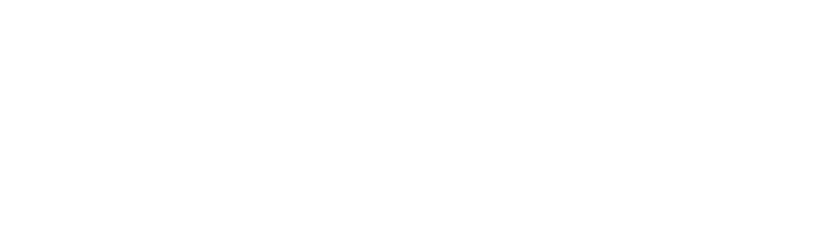 Logo | STL Italia